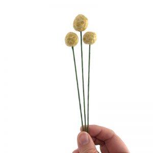 hand holding set of three craspedia flowers